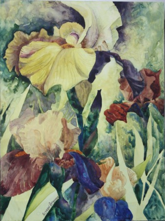 Iris bleu vert